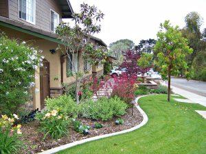 San Diego landscape design by Letz Design Landscape
