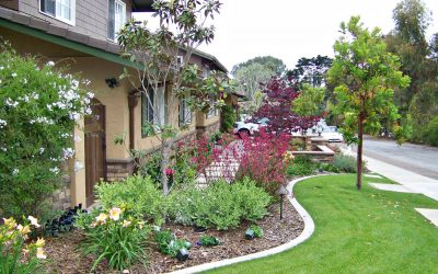 Backyard Landscaping Ideas San Diego contact debora carl landscape design Curb Appeal In San Diego