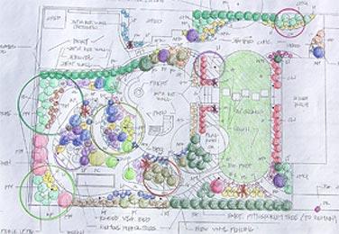 Backyard Landscape Design Plans home backyard landscape design free backyard landscaping ideas Garden Design With Landscape Design Plans Landscape Designer San Diego Letz Design With Images Of Flower