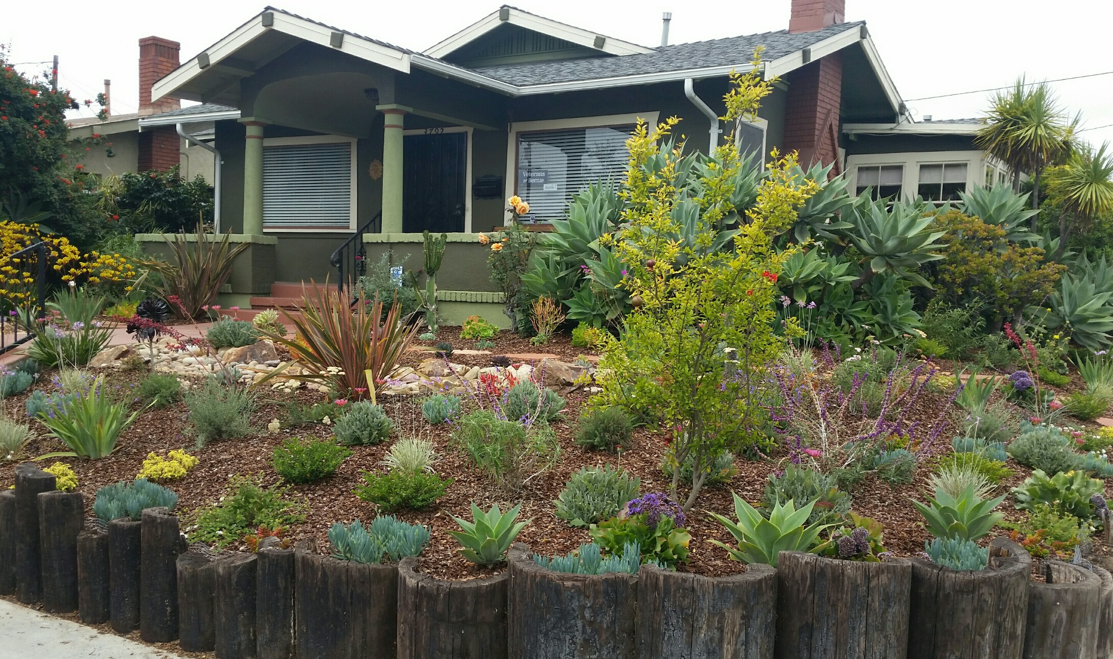 mediterrenean landscape design example in San Diego