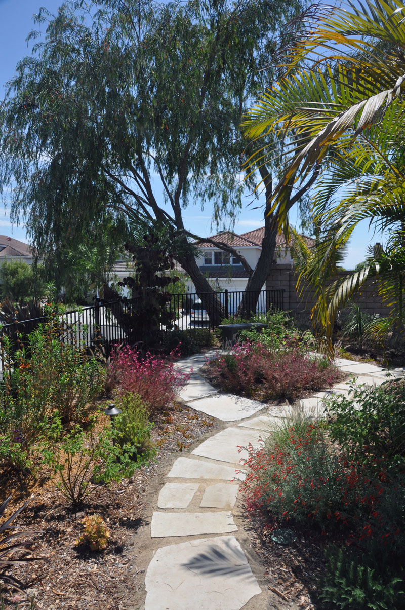 backyard landscape design san diego 05 letz design