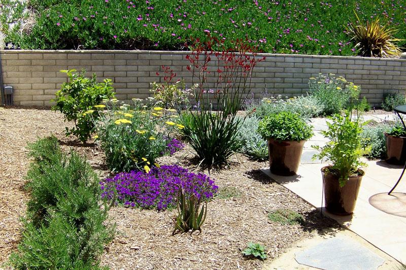 Backyard Landscaping Ideas San Go