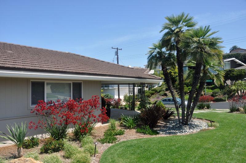 San Diego Landscape Design Letz Design