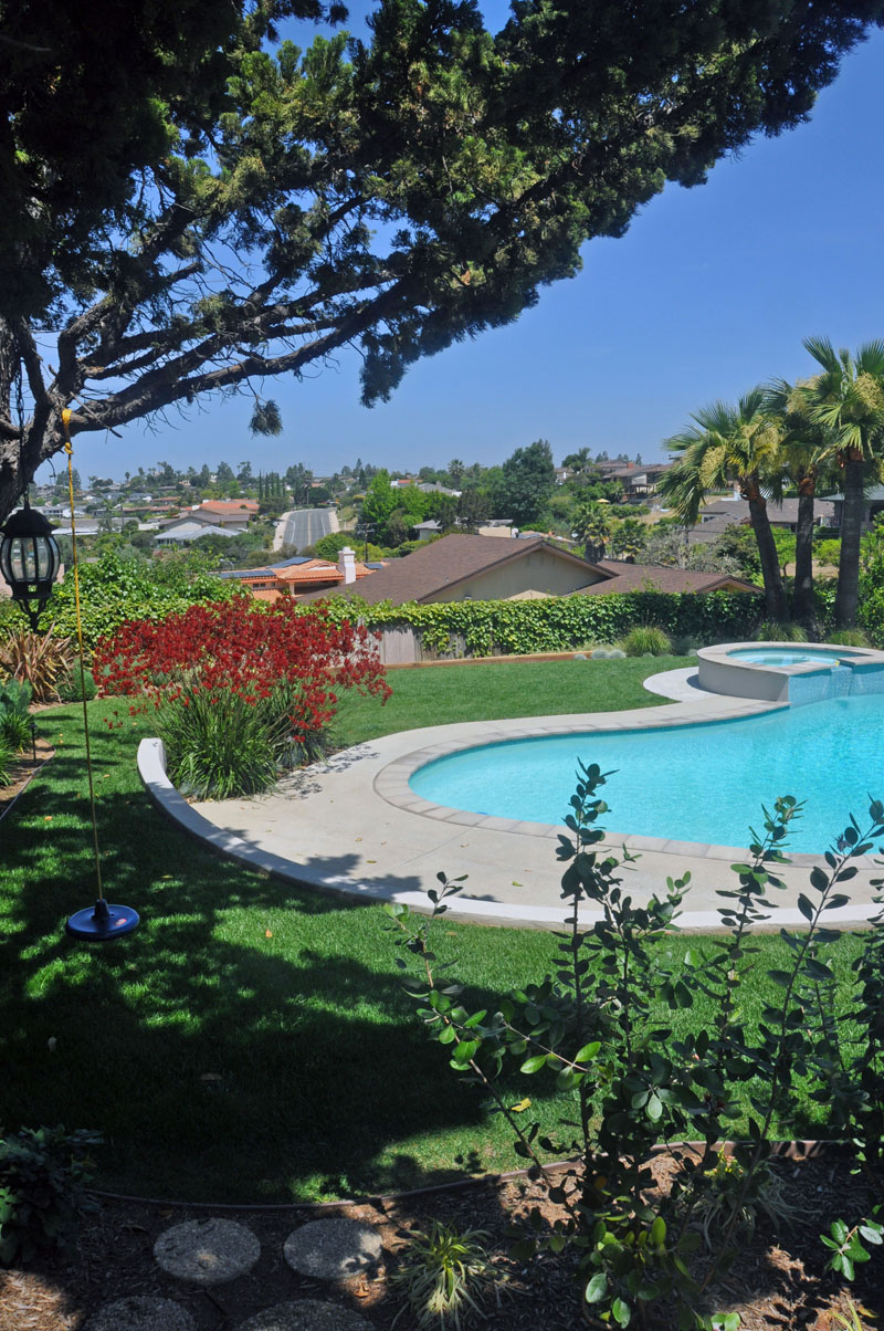 San Diego Backyard Landscape Design With Pool After