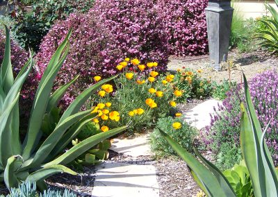 xeriscape-design-san-diego-by02