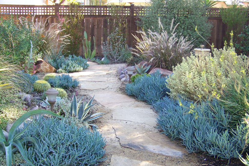 Best Landscape Design San Diego