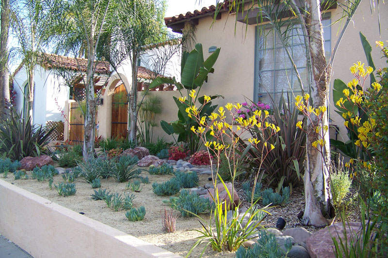 Water Wise Xeriscape