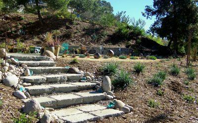 Phasing Your Landscape