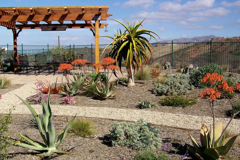 Landscape Designer San Diego