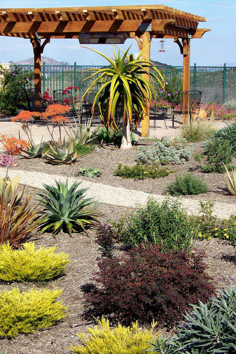 Drought Tolerant Landscape Design. Free Xeriscaping Drought ...