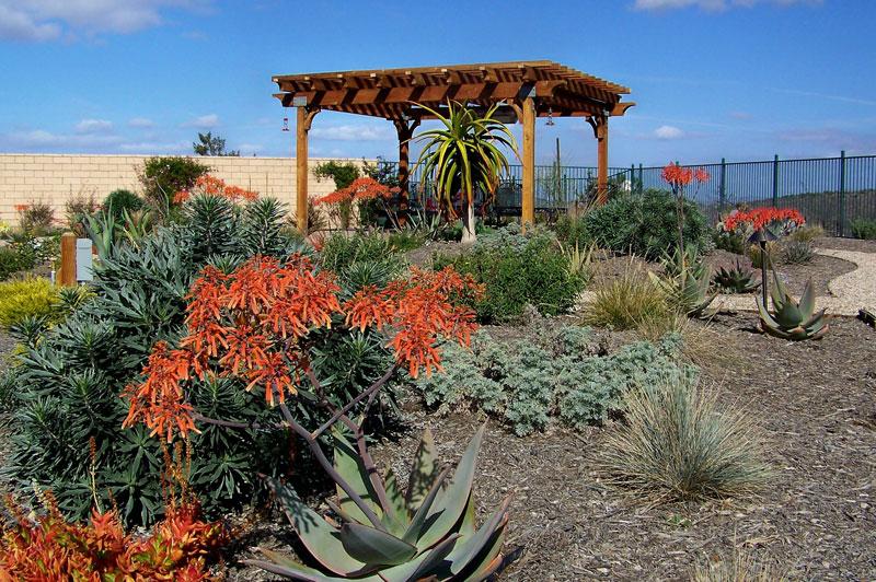 Landscape jobs san diego flower garden ideas around bird for Garden and landscape design jobs