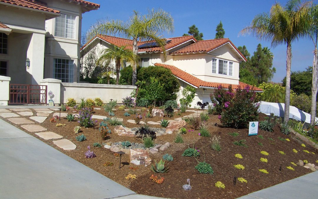 What To Expect From Your San Diego Landscape Company