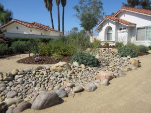 Water Wise Landscape After