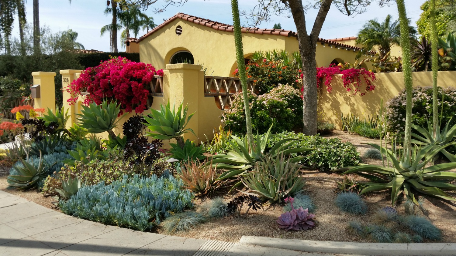 Garden landscape designer san diego landscaping with for Outside landscape design