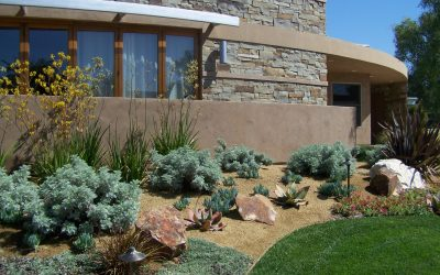 Contemporary Landscape Design in San Diego