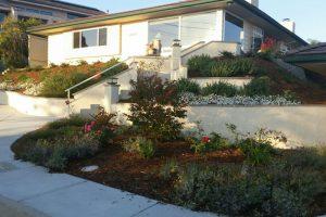San Diego Landscape Design Company