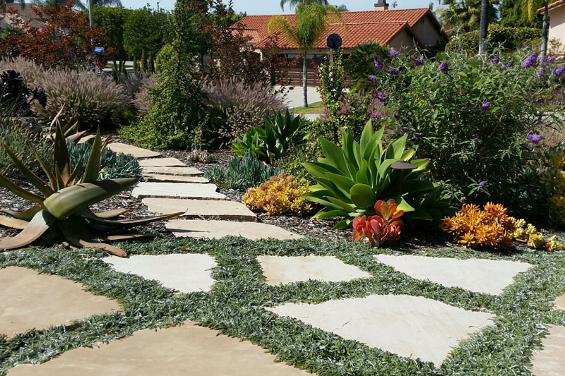 This site contains information about Landscaping San Diego Landscapers San  Diego CA. - Landscaping San Diego Landscapers San Diego CA - Plusarquitectura.info