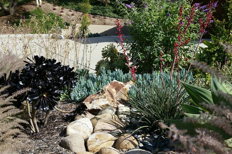 San Diego Landscape Design Bonita