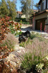 san diego mediterranean landscapeLandscape Design 2