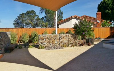 San Diego Contemporary Landscape Transformation